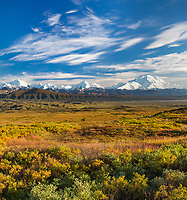 Denali and the Alaska Range mountains, autumn tundra, Denali National Park, Alaska.