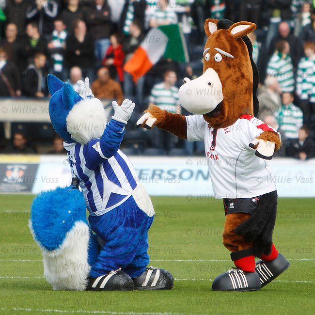 SPL mascot lands a punch on the Kilmarnock squirrel's jaw as the mascots square up on the pitch