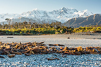 Driftwood on Gillespies Beach in winter with Southern Alps, Mount Cook and Mount Tasman in background, Westland Tai Putini National Park, UNESCO World Heritage Area, West Coast, New Zealand, NZ