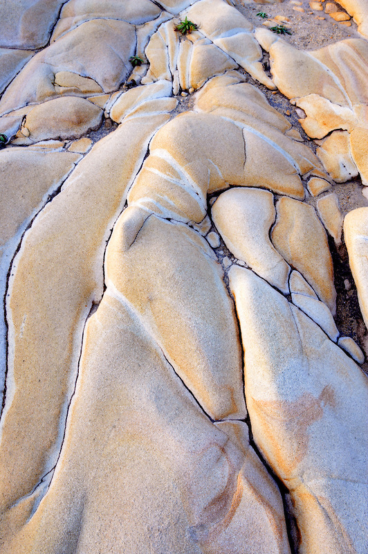 Unusual sandstone rock formation. Salt Point State Park. California