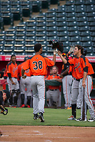 AZL Giants designated hitter Aaron Bond (38) is congratulated by Francisco Medina (37) after hitting a home run during a game against the AZL Angels on July 9, 2017 at Diablo Stadium in Tempe, Arizona. AZL Giants defeated the AZL Angels 8-4. (Zachary Lucy/Four Seam Images)