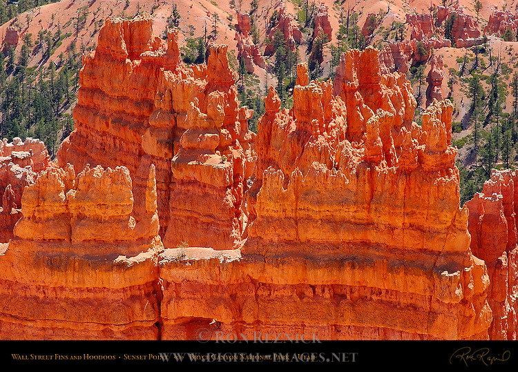 Wall Street Fins and Hoodoos from Sunset Point, Bryce Canyon National Park, Utah