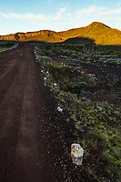 France, île de la Réunion, Parc national de La Réunion, classé Patrimoine Mondial de l'UNESCO, volcan Piton de la Fournaise, route de la Plaine des Sables //  France, Reunion island (French overseas department), Parc National de La Reunion (Reunion National Park), listed as World Heritage by UNESCO, Piton de la Fournaise volcano, road of Plaine des Sables