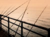 Fishing poles on Santa Monica Pier, California