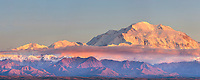 Panorama of pink light on Mt. Denal, Denali National Park, Alaska.