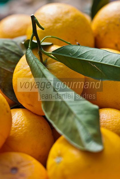 Europe/France/2A/Corse du Sud/Ajaccio: Le marché _ Oranges Corses