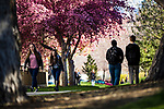 _YU19912<br /> <br /> 1704-06 GCS Spring<br /> <br /> April 5, 2017<br /> <br /> Photography by Nate Edwards/BYU<br /> <br /> &copy; BYU PHOTO 2016<br /> All Rights Reserved<br /> photo@byu.edu  (801)422-7322