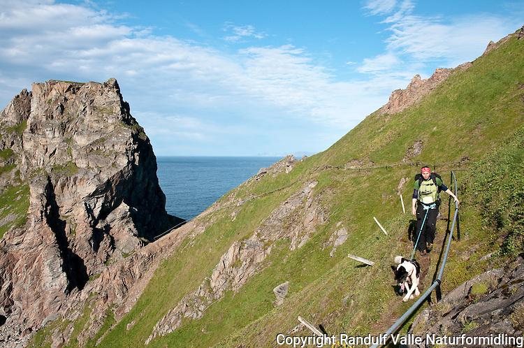 Dame med hund på vei opp Fyrvokterveien fra Tarhalsen på Sørøya. ---- Woman and dog walking along steep path.