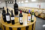 SPAIN Mallorca, Binissalem, Finca Biniagual, vineyard / SPANIEN Mallorca, , Binissalem, Finca Biniagual, Weinkellerei