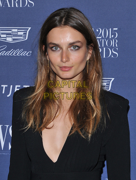 New York,NY-November 4: Andreea Diaconu  attend the WSJ. Magazine 2015 Innovator Awards at the Museum of Modern Art on November 4, 2015 in New York City. <br /> CAP/MPI/STV<br /> &copy;STV/MPI/Capital Pictures