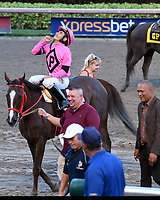 HALLANDALE, FL - DECEMBER 02: Flowers for Lisa with jockey Paco Lopez wins the  $200,000.00 starter Stakes ran at One And One Eighth Miles on opening day at Gulfstream Park on December 2, 2017 in Hallandale, Florida <br /> <br /> People:  Flowers for Lisa, Paco Lopez<br /> <br /> Transmission Ref:  FLXX<br /> <br /> Hoo-Me.com / MediaPunch