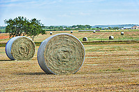 Haybales in the Texas Hill country with a big blue sky at this farm.