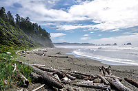 Mist on a summer day at Shi Shi Beach, Olympic National Park, WA