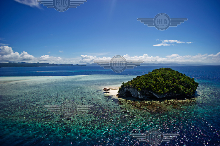 A an islet in the Raja Ampat Islands, a mass of karsts that make up the northwestern tip of West Papua an area known as the Bird's Head Seascape. The undersea enviroment is possibly the most biodiverse stretch of water on the planet.