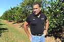 Saxon Becnel Citrus Farm in Plaquemines Parish sustained damage during Hurricane Isaac, 2012