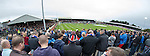 Bears at Somerset Park