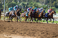 ARCADIA, CA APRIL 8: Field of the Santa Anita Derby (Grade l) on April 8, 2017 at Santa Anita Park in Arcadia, CA (Photo by Casey Phillips/Eclipse Sportswire/Getty Images)