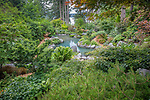 Vashon-Maury Island, WA: Saltwater plunge pool  surrounded by woodland perennial garden.