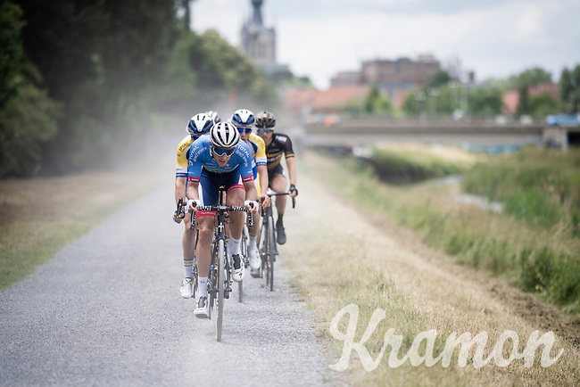 Niki Terpstra (NED/Total - Direct Energie) leading the way<br /> <br /> Dwars door het Hageland 2019 (1.1)<br /> 1 day race from Aarschot to Diest (BEL/204km)<br /> <br /> ©kramon