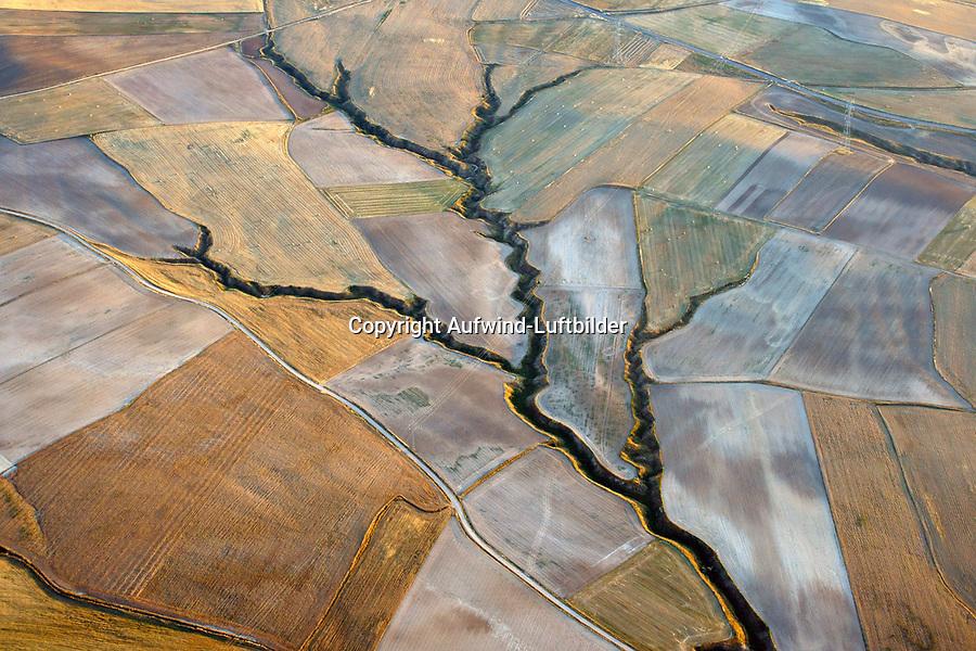 Spanische Landschaft: SPANIEN, KASTILIEN LEON, 18.07.2018: Landschaft der Provinz Kastilien- Leon, ein Bach wie ein Baum im Ackerland, natürlich Formen