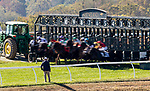 OCT 05: the field breaks for the Woodford Keeneland Select at Keeneland Racecourse, Kentucky on October 05, 2019. Evers/Eclipse Sportswire/CSM