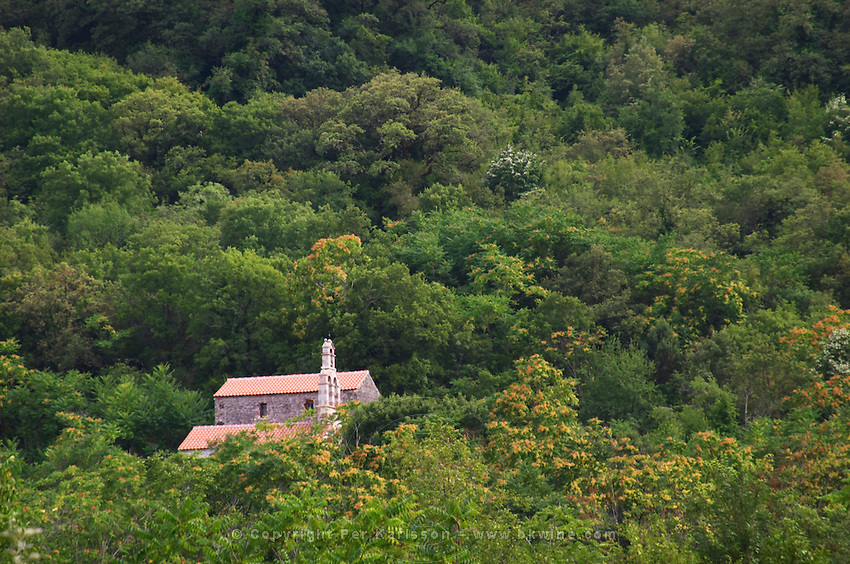 A church chapel across the forest from the winery. Durovic Jovo Winery, Dupilo village, wine region south of Podgorica. Vukovici Durovic Jovo Winery near Dupilo. Montenegro, Balkan, Europe.