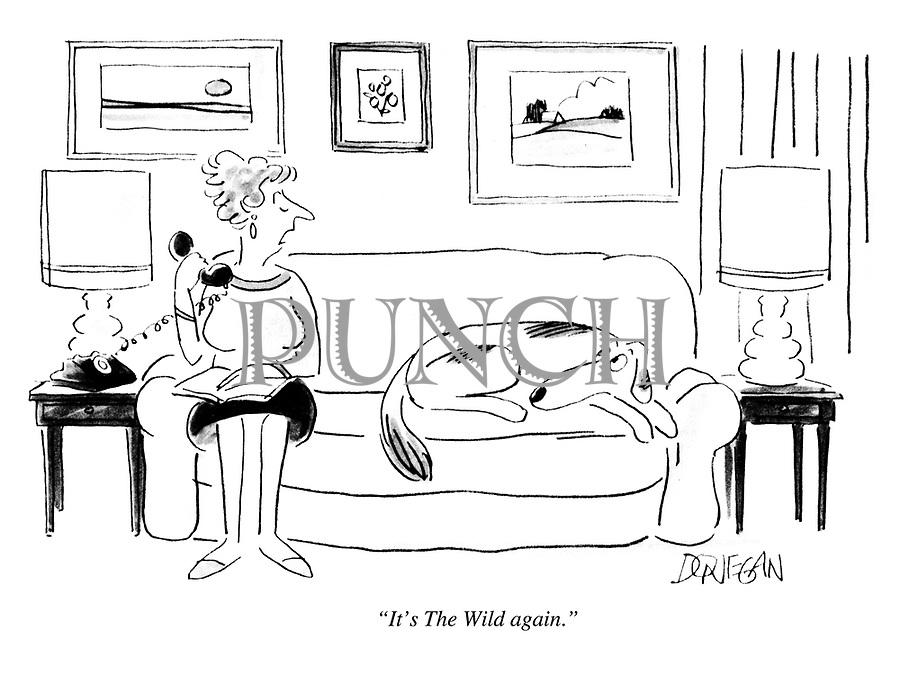 """It's The Wild again."""