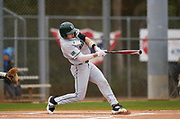 Dartmouth Big Green Trevor Johnson (36) bats during a game against the Indiana State Sycamores on February 21, 2020 at North Charlotte Regional Park in Port Charlotte, Florida.  Indiana State defeated Dartmouth 1-0.  (Mike Janes/Four Seam Images)
