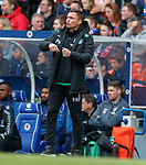 05.05.2019 Rangers v Hibs: Paul Heckingbottom