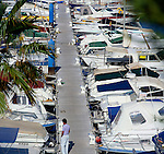 Man looking at boats moored at puerto Colon harbour, Tenerife, Canary Islands, Spain.
