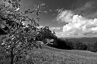 Basilicata 2010 - Panorama visto dalla montagna nei pressi del Sagittario - Chiaromonte.
