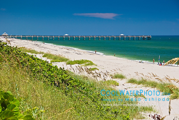 Juno Beach Pier, Juno Beach, one of the most productive sea turtle nesting sites in the world, Florida, Atlantic Ocean