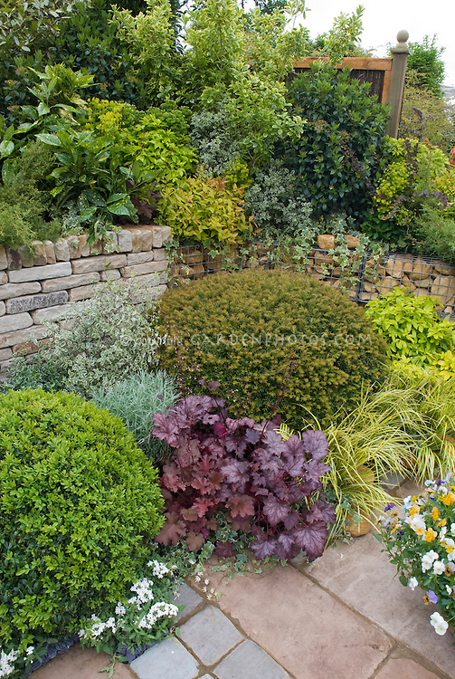 Stone wall enlivened by beautiful plantings for curb appeal - Heuchera, shrubs, evergreens, Acorus, Euonymus, Aucuba, etc.