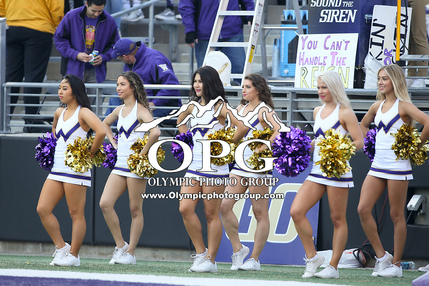 SEATTLE, WA - OCTOBER 28:  Washington cheerleader Karli Berger entertained fans during the game against UCLA on October 28, 2017 at Husky Stadium in Seattle, WA. Washington won 44-23 over UCLA.