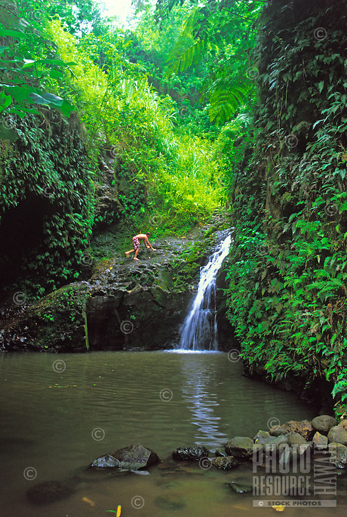 Maunawili Falls.  Located on the Maunawili Trail on the windward side of Oahu near the town of Kailua.