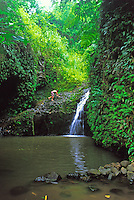 Maunawili Falls.  Located on the Maunawili Trail on the windward side of Oahu near the town of Kailua.
