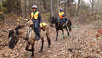 NWA Democrat-Gazette/FLIP PUTTHOFF <br /> Horses and riders make their way down the trail.