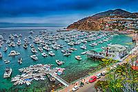 Catalina Island, CA, Avalon, harbor, USA, Santa Catalina, Island, Luxury, Sailboats, Powerboats, Yachts, Moored,