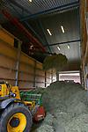 POLAND, Juchowo, organic milk cow farm, hay stock / POLEN, Juchowo, biologisch wirtschaftender Milchviehbetrieb, Heulager