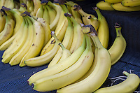 Bananas are seen in a supermarket in New York on Tuesday, November 17, 2015. (© Richard B. Levine)