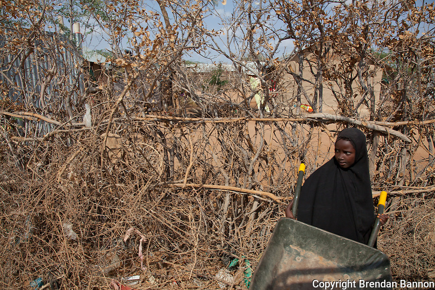 Dadaab refugee camp is home to nearly 400,000 refugees from Somalia, Ethiopia and Sudan. many have lived  there for 20 years. Drought in Somalia dn continued war and insecurity have forced tens of thousands to  flee to the camp for shelter food and water in recent months.