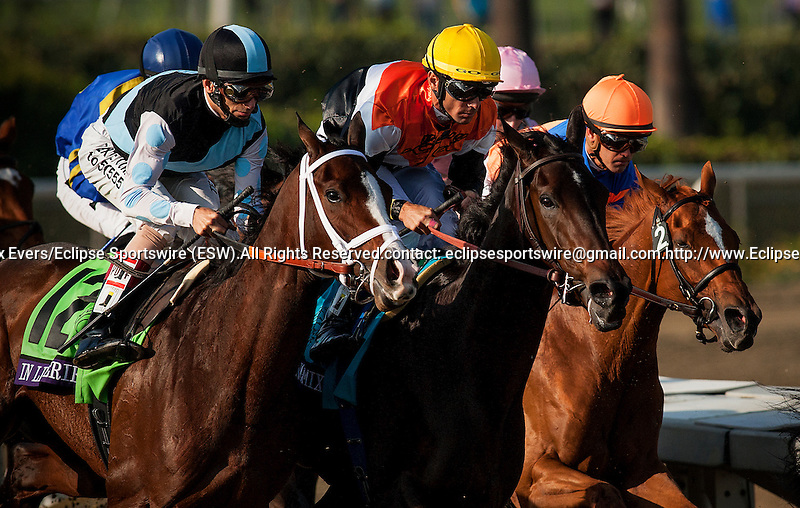 In Lingerie with John Valezquez, Marketing Mix and Garrett Gomez, and eventual winner, Zagora with Javier Castellano aboard race in the Breeders' Cup Filly and Mare Turf at Santa Anita Park in Arcadia, California on November 2, 2012.