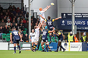 10th September 2017, Sixways Stadium, Worcester, England; Aviva Premiership Rugby, Worcester Warriors versus Wasps; Donncha Ocallaghan of Worcester Warriors not close to stopping Kearnan Myall of Wasps collecting the line out ball