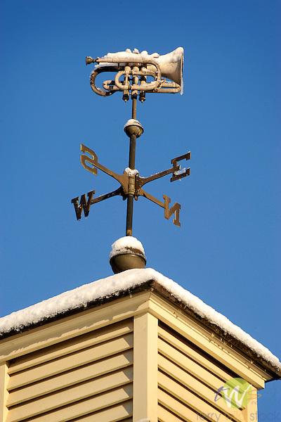 Weather vane with cornet, ice and snow.