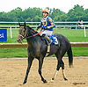 Man of Quality winning at Delaware Park on 6/20/15