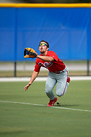 Philadelphia Phillies left fielder Austin Listi (24) makes a diving catch in foul territory during an Instructional League game against the Toronto Blue Jays on October 7, 2017 at the Englebert Complex in Dunedin, Florida.  (Mike Janes/Four Seam Images)