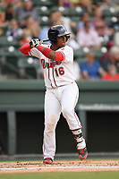 Catcher Roldani Baldwin (16) of the Greenville Drive bats in a game against the Asheville Tourists on Wednesday, August 2, 2017, at Fluor Field at the West End in Greenville, South Carolina. Greenville won, 1-0. (Tom Priddy/Four Seam Images)