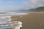 California, Pacific Ocean, North coast, wilderness beach, surf, Prairie Creek Redwoods State Park, Humboldt County, California, USA,
