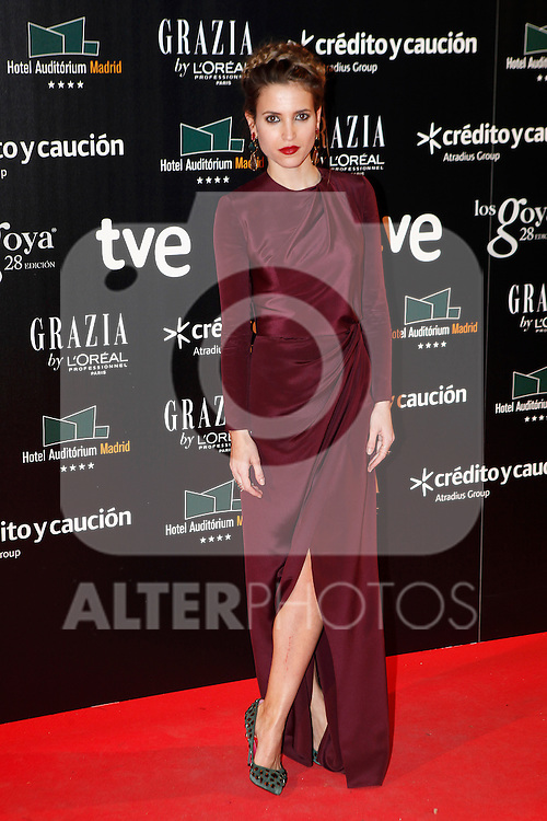 Actress Ana Fernandez attends Goya Cinema Awards 2014 red carpet at Centro de Congresos Principe Felipe on February 9, 2014 in Madrid, Spain. (ALTERPHOTOS/Victor Blanco)