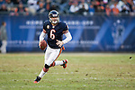 2010-NFL-Wk12-Eagles at Bears